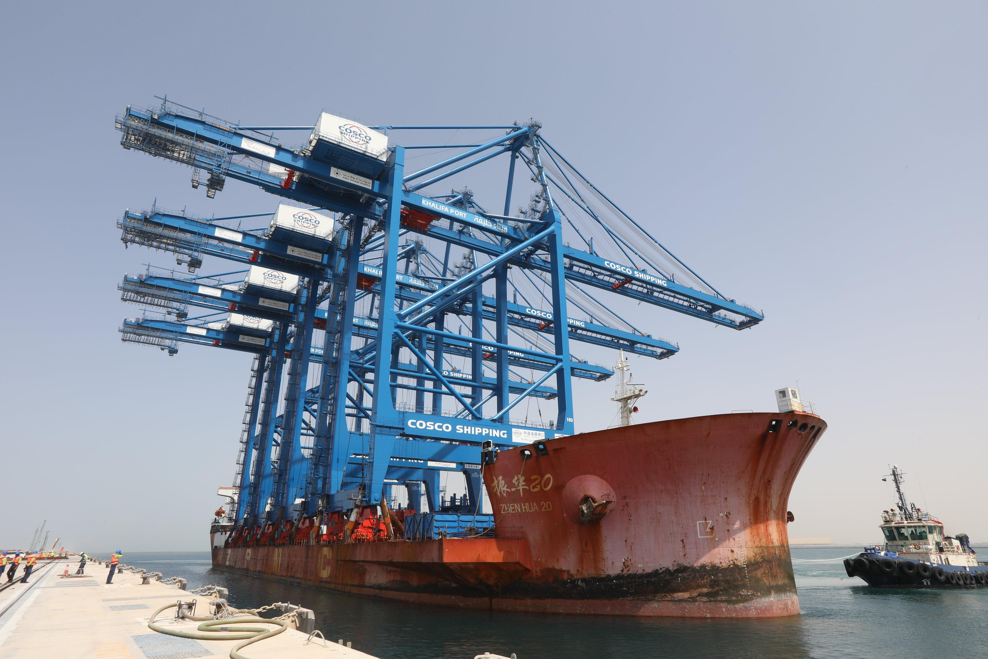 Cranes arrive in Khalifa