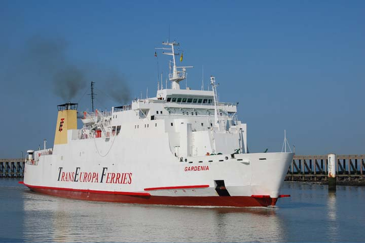 If TransEuropa Ferries had been able to survive until 2015, it would have made a klling