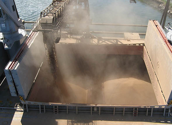 Brazilian grain handler Terlogs for sale?