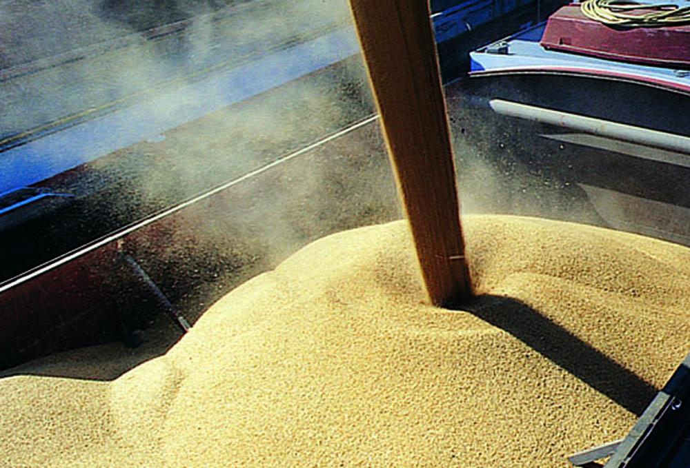 Baltic ferry terminal handles grain exports