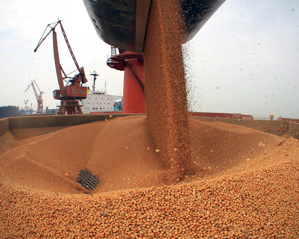 Chinese soya purchases buoy the OSR market