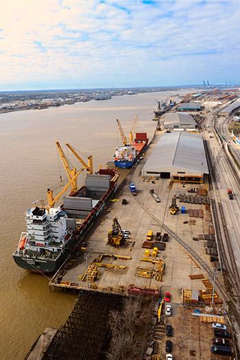 Octopi for Coastal Cargo