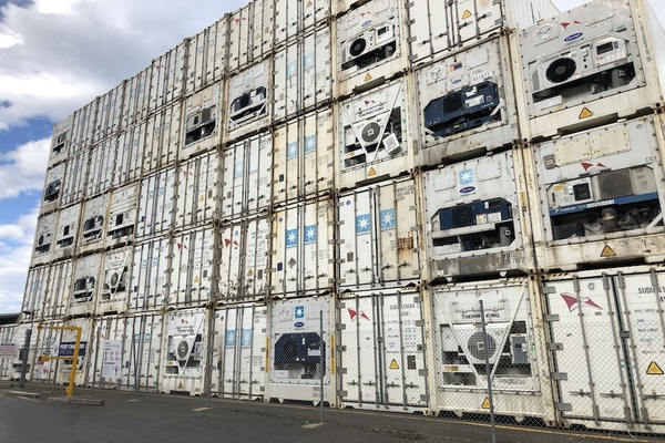 Reefer containers & vaccine logistics