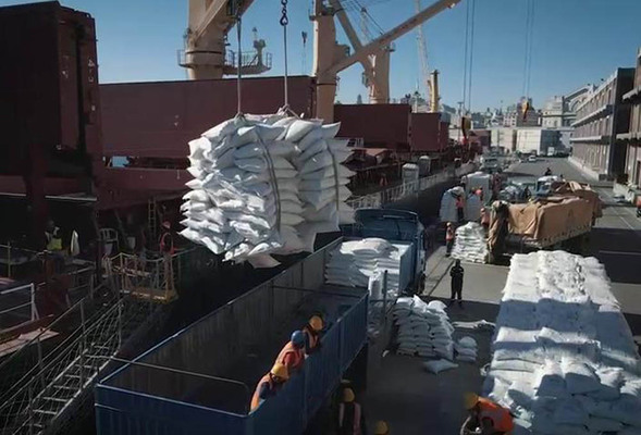 Bagged rice loading operation in Montevideo