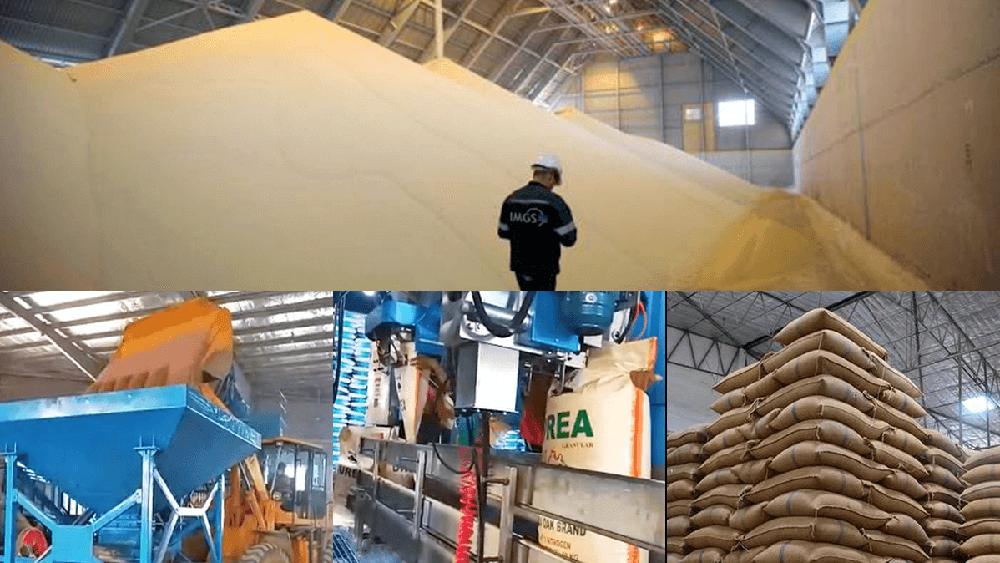 IMGS sets up fertiliser operation in Myanmar