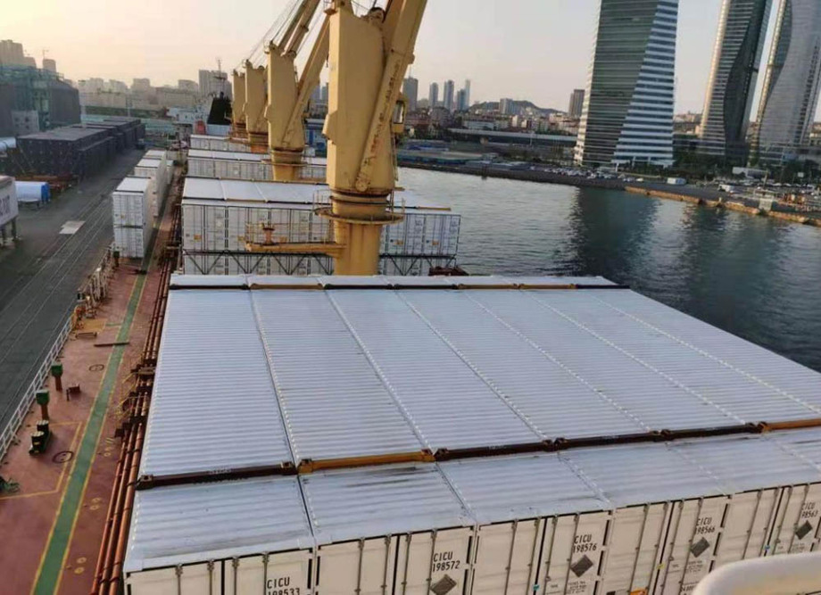 Containers safely loaded aboard a dry bulk carrier vessel